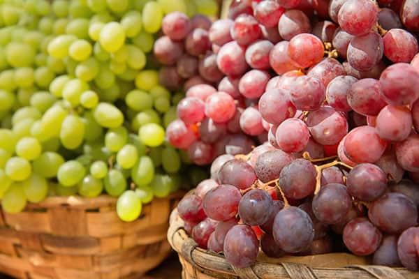 cure-de-raisins